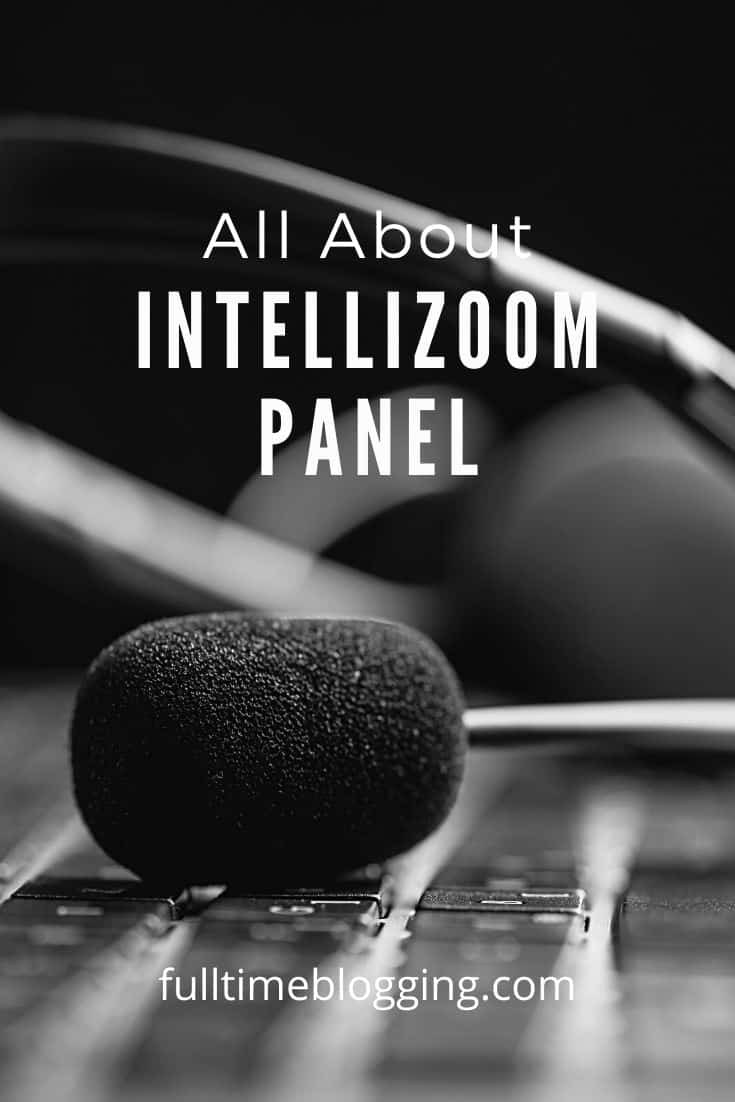 about intellizoom panel